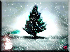 LITTLE TREE IN THE BIG SNOW (fantartsy JJ *2013 year of LOVE!*) Tags: trees winter snow nature beauty birds snowman happiness goldstar blueribbon eyeofthebeholder instafave passionphotography beautifulcapture mywinners mywinner abigfave platinumphoto merrychristmashappynewyear superbmasterpiece goldenphotographer goldenphotographeraward diamondclassphotographer citrit flickrelitegroup creativephotographers originaldigitalart photostosmileabout goldsealofquality platinumphotography everydayissunday perfectphotographer photosthatrock life~asiseeit