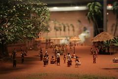(neelgolapi) Tags: new york newyorkcity newyork history museum natural american diorama americanmuseumofnaturalhistory explored canoneosdigitalrebelxti