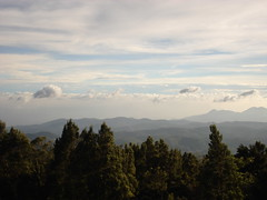 doddabetta peak, ooty, the nilgiri