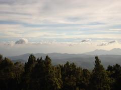 doddabetta peak, ooty, the nilgiri