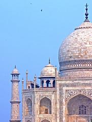 India-6210 - Details of the Taj Mahal