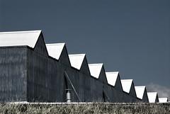 Rooftops (FaceMePLS) Tags: nederland thenetherlands zeeland vlissingen overstroming scheepswerf westerschelde koninklijkeschelde loodsen nikond200 watersnood facemepls dijkdoorbraak margrietdemoor deverdronkene springvloed 1februari1953 damenshipyardsgorinchem eerbetoon noordwesterstorm royalscheldedockandshipyard