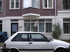 (Leanda) Tags: bird amsterdam jordaan