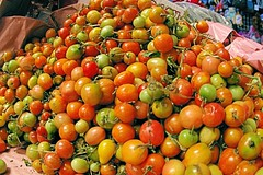 Tiny Tomato (cwgoodroe) Tags: blue food beach beer pool mexico sand surf markets palmtrees bowls zihuatanejo infinitypool fishingvillage trinkets tacostand cervesa sfchronicle intrawest zihua zhihua outdoormarket 96hrs playadelropa