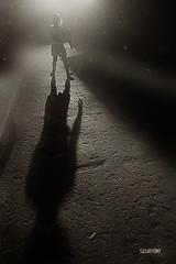 Fog (span9e) Tags: theperson beamsofthesun