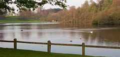 The lake at Studley Royal