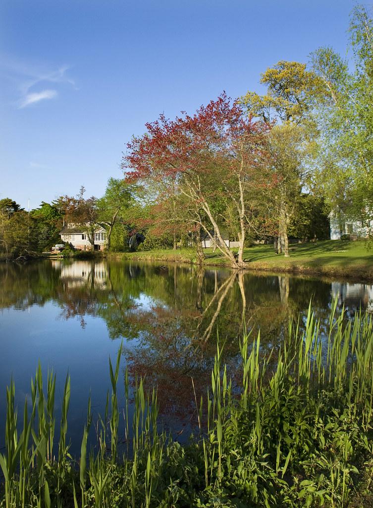 Behman's Pond