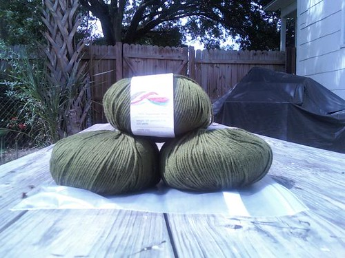 888 Olive Cascade 220 Superwash