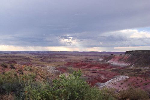 Painted Desert vista