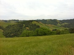 EBRPD - Briones Regional Park - Looking across to Diablo