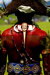 Papua New Guinea Huli (Eric Lafforgue) Tags: pictures red hat pig photo back teeth picture culture tribal os explore highland dos papou chapeau tribes bone png tribe papuanewguinea papua ethnic huli papu ethnology 巴布亚新几内亚 ethnologie h3d casoar ethnique papous papuaneuguinea lafforgue papuanuovaguinea wigman パプアニューギニア ethnie ericlafforgue papuan papouasie papouasienouvelleguinée mounthagenshow papuans papoeanieuwguinea papuásianovaguiné wigmen mthagenshow ericlafforguecom 9651b παπούανέαγουινέα папуановаягвинея papuanewguineapicture papuanewguineapictures paouasienouvelleguinéephoto papouasienouvelleguineephotos papuanewguineanpeople mthagenfestival mounthagenfestival maquillagemounthagen maquillagemthagen makeupmthagen papúanuevaguinea augustfestival 巴布亞紐幾內亞 巴布亚纽几内亚 巴布亞新幾內亞 paapuauusguinea ปาปัวนิวกินี papuanovaguiné papuanováguinea папуановагвинеја بابواغينياالجديدة bienvenuedansmatribu