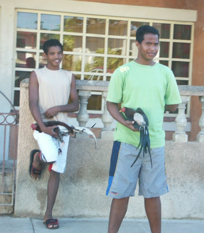 Cuba: fotos del acontecer diario - Página 6 2120973709_16834f9643_o
