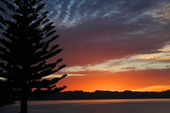 Dawning of another day (Heaven`s Gate (John)) Tags: sea newzealand vacation sky mountains color colour tree silhouette sunrise landscape dawn scenery creative dramatic northisland imagination breathtaking coromandel newday whitianga johndalkin heavensgatejohn mercurybay onlythebestare