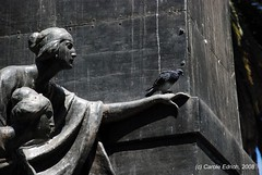 aDSC_0012 (webwandering-back.having.recovered.password) Tags: argentina statue pigeon carole salta plazaprincipal edrich saltacapital