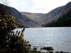 co. wicklow, ireland: day 3