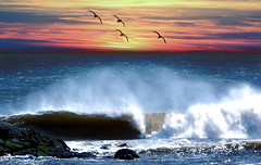~Ocean Breeze~ (my4otos) Tags: ocean sunset seagulls mist art beach nature landscape newjersey interestingness waves nina soe seaspray bradleybeach flickrsbest mywinners anawesomeshot aplusphoto wowiekazowie diamondclassphotographer flickrdiamond onlythebestare excapture thatsbostin theperfectphotographer unlimitedphotos