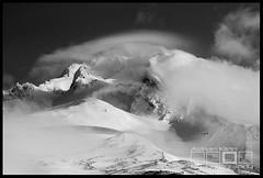 Hood's Early Light - Mt Hood, Oregon (Adrian Klein) Tags: light clouds oregon sunrise klein gates climbing mthood adrian pearly hogsback