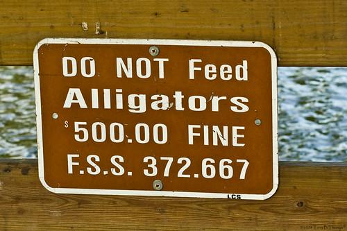 9_AlligatorSign