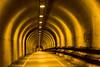Twenty Five (Thomas Hawk) Tags: night 10 marin tunnel fav20 marincounty marinheadlands fav10 fav25 superfave gettyartistpicksoct09