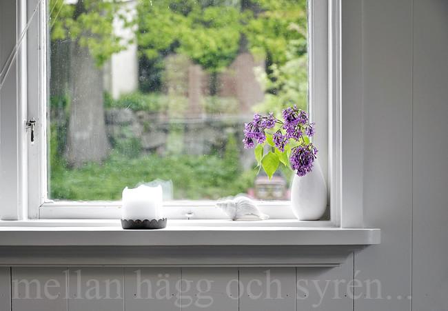 vårfönster