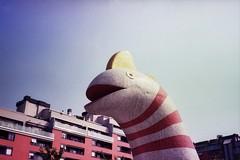 (barbieri simone) Tags: film olympustrip35 milano italy simonebarbieri 35mm 2011 archive