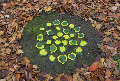 Leaf circle by JRT Pickle