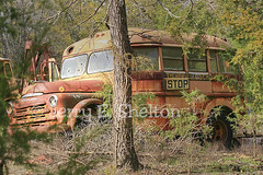 Old School bus - Douglas County Missouri (Uncle Phooey) Tags: old autumn color fall abandoned rural canon october rust colorful decay scenic mo explore missouri ozarks corrosion ruraldecay patina oldbus douglascounty oldvehicle ruralmissouri xti canonxti douglascountymissouri unclephooey