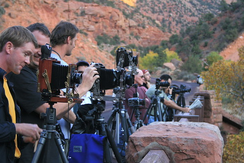 More Photographers then Wildlife at Zion's National Park