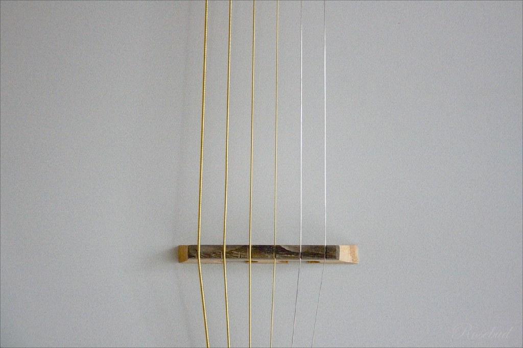 6 string banjo ©2007 RosebudPenfold