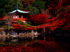 sanctuary (M. TANIGUCHI) Tags: red japan bravo kyoto   mywinners abigfave platinumphoto anawesomeshot diamondclassphotographer flickrdiamond topogigio2007 alemdagqualityonlyclub
