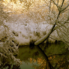 My wild river knows!!! :))) (Denis Collette...!!!) Tags: winter light snow canada love nature angel oracle bravo energy peace force quebec spirit lumire invisible buddha hiver ange rivire negative amour mind soul newborn depression innocence neige strength positive spiritual emotions tao contemplative liberation desires rveil esprit paix synchronicity dsir sauvage contemplatif spirituel conditioning primordial ambitions dpression inconscient delivrance conditionnement deniscollette wildriver world100f santaclaus prenol 64hexagrams iching 64hexagrammes yiking carljung natureknows collectiveunsconscious inconscientcollectif explorewinnersoftheworld