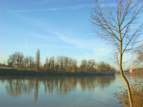 Au bord de la Seine  (18) v