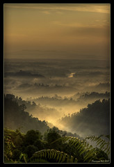 Let there be Light! (Chee Seong) Tags: morning trees panorama fog sunrise canon hill malaysia pahang firstquality canon2470mm sungailembing 400d flickrplatinium holidaysvacanzeurlaub bratanesque
