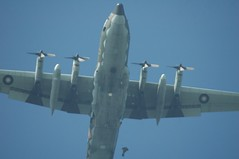 PaRaChUtiNg - 14.jpg (BuLu Chien) Tags: taiwan parachuting c130