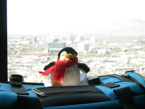 2008-04-02 Penguin in Reno (1)