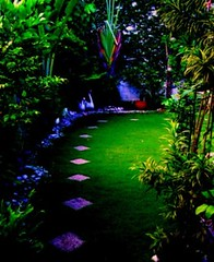 the path less travelled (purplbutrfly) Tags: garden path chie dscw30 gardenmosaic purplbutrfly