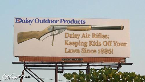 Daisy Air Rifle
