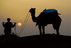 Manvar Tableau 2 (BrianRope) Tags: sunset india photography desert brian rope camel rajasthan manvar
