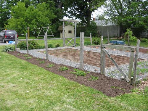 Veg Garden1