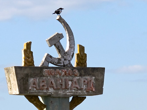 Bird on hammer + sickle