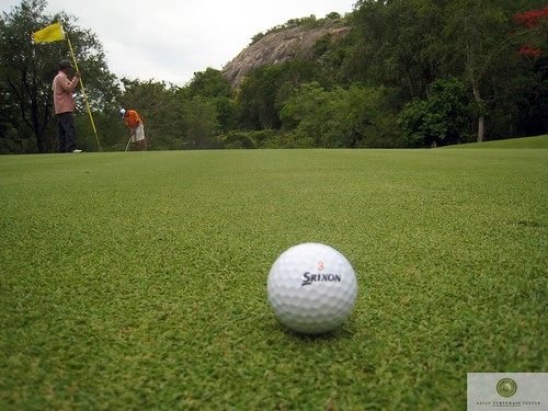 zoysia green at Royal Hua Hin