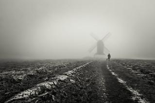 Fog on the mill