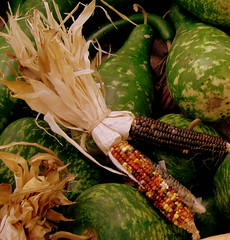 corn and gourds (mbgrigby) Tags: autumn fall gourds corn vivid mkt ~ lees driedcorn anawesomeshot coloursplosion