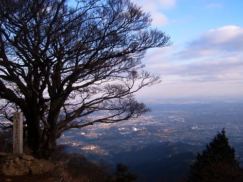 Oyama autumn