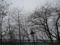 street lamp, tree without leaves, grey sky, winter, so english
