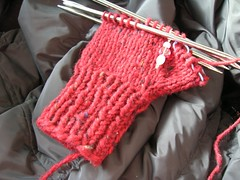 mittens for Soaring Eagles Project.JPG