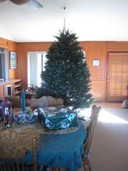 IMG_1873 (Katrinamom1) Tags: christmas jason robert katrina sandy bob andrew barbara bobby sue theo sheila 2007 leker carruthers vanderveen
