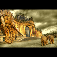 A Day Outside The Museum (Dimitri Depaepe) Tags: wood fab building museum sepia gate belgium belgie palace tervuren elephants hdr infinestyle bratanesque