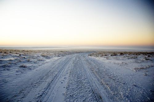 icy fog 072