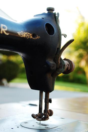 partial rear